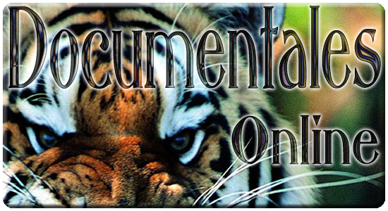 Documentales Gratis Online En Español