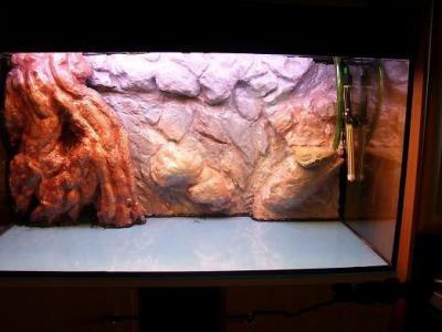 Aquarium tipps tricks 3d aquariumr ckwand - 3d ruckwand aquarium 150x60 ...