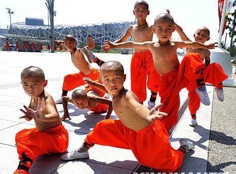 arts martiaux chinois cole club luan perpignan france