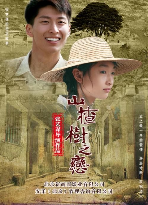 Under The Hawthorn Tree – 2010 – Çin – Tr Altyazılı HD izle