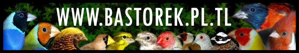 Hodowla Ptaków Egzotycznych