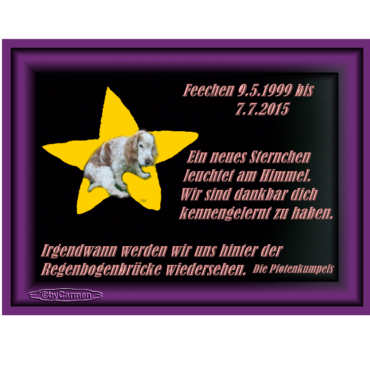 An den Beitrag angehängtes Bild: http://img.webme.com/pic/b/bennys-galerie/RegenbogenFee07072015.png
