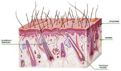 Arreglamos la mancha de pigmento sobre el labio