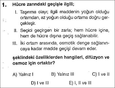 Hücre test 4