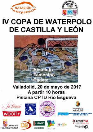 Natacion parquesol noticias for Piscina rio esgueva