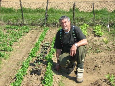 La voliera il contadino for Piantare piselli