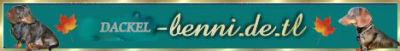 BENNIs WELT - Eine private HP für Dackelfreunde