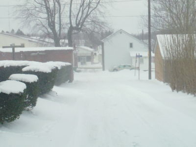PICKS OF CARROLTOWN PA COVERED IN SNOW ( enjoy) Sam_0062