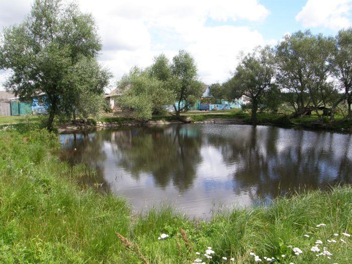 Погода в новомалороссийской краснодарского края