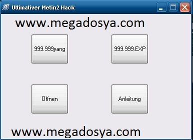 Metin2 Angeblicher Yang Hack Download