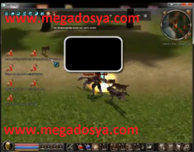 Metin2 Final Level Bot Hilesi Cekme Hack indir