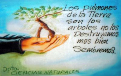 - Murales Ecologicos