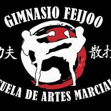 escuelas de kung fu en madrid madrid capital
