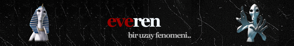 http://img.webme.com/pic/e/everen/everenlogo7.png
