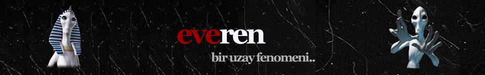 http://img.webme.com/pic/e/everen/everenlogo7.png
