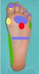 El enrojecimiento de la piel en el pie a varikoze la foto