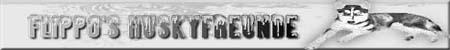 Huskyfreunde oder die die es noch werden möchten. Husky's Haltung Treffen