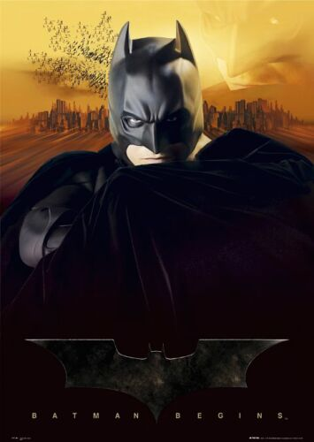 Batman Begins (2005) - Subtitulada