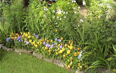 Gaby mariani paisajismo canteros for Canteros de jardin