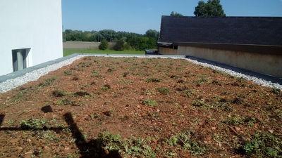 Landschaftsbau dachbegr nung ihr g rtner bauprojekte 2016 for Gartengestaltung chemnitz