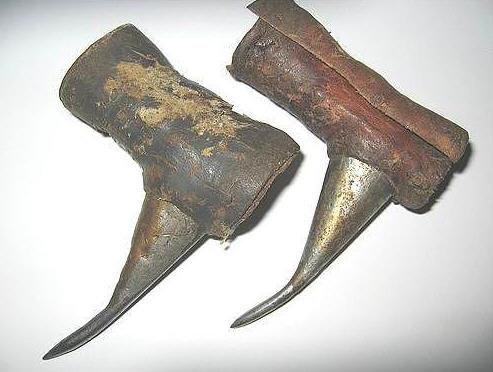 Gallos Con Espuelas Gallo Armado Con Espuelas