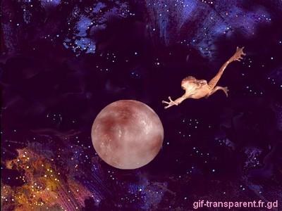 espace cosmique avec grenouille volant dans l'espace