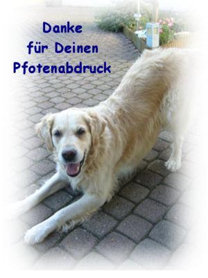 Gästebuch Banner - verlinkt mit http://www.gr-sammy.de.tl/Home.htm