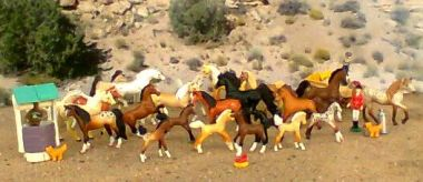 Grand champions pferde