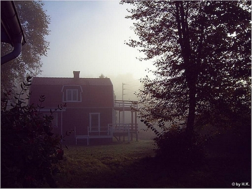 Herbstnebel in Småland
