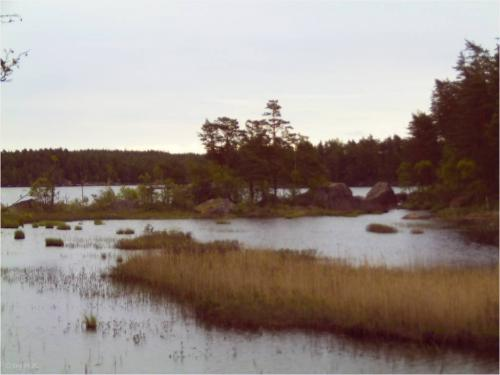 Natur in Småland