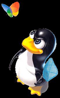 linux avlar