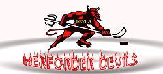 Forum der Herforder Devils