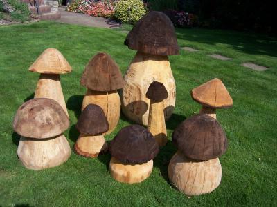Pilze aus holz home - Pilze basteln aus holz ...
