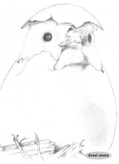 Pin ausmalbilder küken im ei