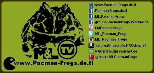 M&L Pacman Frogs - Ceratophrys cranwelli, ornata, stolzmanni, aurita, joazeirensis, cornuta, Horned Frogs, Schmuckhornfrosch, Hornfrosch