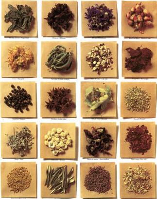 Şifali bitkiler otlar faydalari nelerdir hangisi ne işe yarar