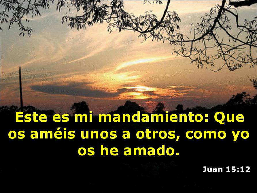 MINISTERIOS CASH LUNA: QUE ES EL MINSITERIO CASA DE DIOS, CIUDAD DE DIOS EN GUATEMALA, COMO HAGO PARA LLEGAR A CASAA DE DIOS DIOS, NECESITO IR A CIUDAD DE DIOS, COMO PUEDO LLEGAR A CIUDAD DE DIOS, COMO ES CIUDAD DE DIOS, MINISTERIOS CASH LUNA: QUE ES EL MINSITERIO CASA DE DIOS, CIUDAD DE DIOS EN GUATEMALA, COMO HAGO PARA LLEGAR A CASAA DE DIOS DIOS, NECESITO IR A CIUDAD DE DIOS, COMO PUEDO LLEGAR A CIUDAD DE DIOS, COMO ES CIUDAD DE DIOS, En 2 Pedro 3:13 se hace otra predicción de nuevos cielos y nueva tierra, caracterizados como lugares donde morará la justicia. En consecuencia, se puede concluir que a través de las Escrituras se consideran el cielo nuevo y la tierra nueva como la meta final de la historia y como el lugar final de reposo de los santos.Habiendo introducido el nuevo cielo y la tierra nueva y la nueva Jerusalén, Juan procede a describir sus características principales.Ap. 21:3-8 3 Y oí una gran voz del cielo que decía: He aquí el tabernáculo de Dios con los hombres, y él morará con ellos; y ellos serán su pueblo, y Dios mismo estará con ellos como su Dios. 4 Enjugará Dios toda lágrima de los ojos de ellos; y ya no habrá muerte, ni habrá más llanto, ni clamor, ni dolor; porque las primeras cosas pasaron. 5 Y el que estaba sentado en el trono dijo: He aquí, yo hago nuevas todas las cosas. Y me dijo: Escribe; porque estas palabras son fieles y verdaderas. 6 Y me dijo: Hecho está. Yo soy el Alfa y la Omega, el principio y el fin. Al que tuviere sed, yo le daré gratuitamente de la fuente del agua de la vida. 7 El que venciere heredará todas las cosas, y yo seré su Dios, y él será mi hijo. 8 Pero los cobardes e incrédulos, los abominables y homicidas, los fornicario y hechiceros, los idólatras y todos los mentirosos tendrán su parte en el lago que arde con fuego y azufre, que es la muerte segunda.Allí Dios habitará con los hombres y será su Dios. El llanto, la muerte y el dolor serán abolidos, como Juan afirma, «porque las primeras cosas pasaron» (y. 4). Est