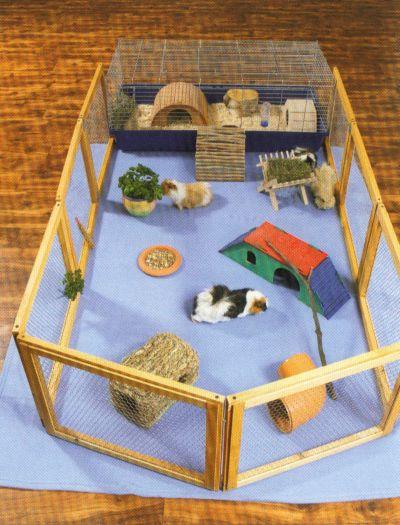meerschweinchen. Black Bedroom Furniture Sets. Home Design Ideas