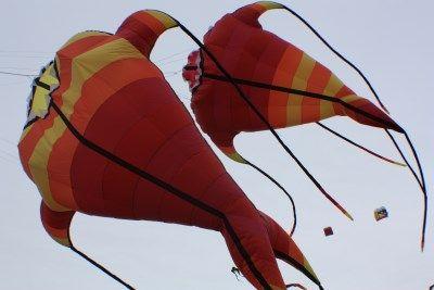 nordhorn kite team das nordhorn kite team. Black Bedroom Furniture Sets. Home Design Ideas