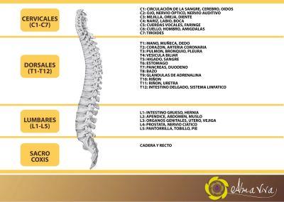 El tratamiento de las hernias de la columna vertebral el sanatorio