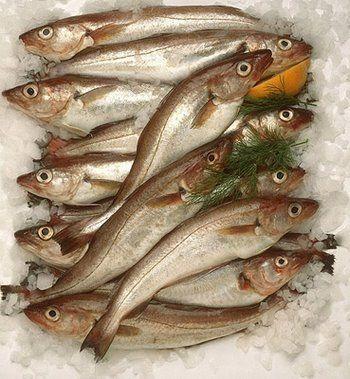 Pescados y mariscos ventura nuestros pescados for Cocinar pez espada