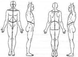 befund physiotherapie: