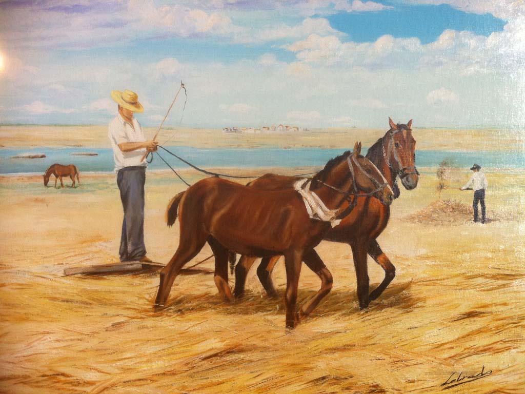 Pintura taurina - Pagina Caballos 3 - photo#29
