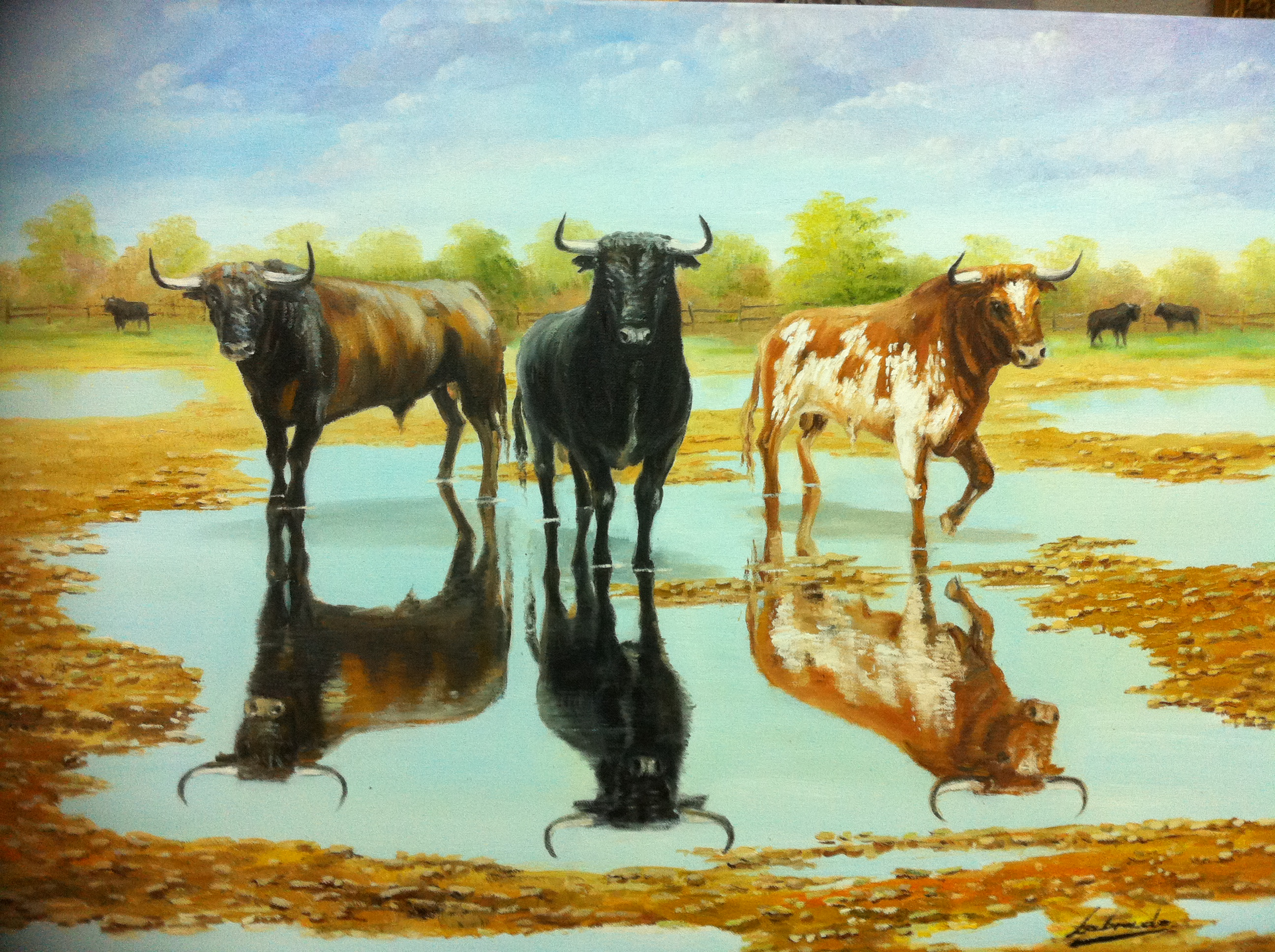 Pintura taurina - Pagina toros 2 - photo#49