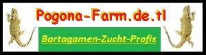 308 Pogona-Farm