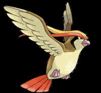 Mi Top 10 de pokemons Pidgeot