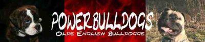 http://www.powerbulldogs.de.tl