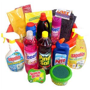 Cursos practicos curso de productos de limpieza - Productos para limpieza de alfombras ...