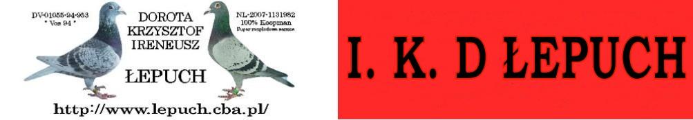 HODOWLA GO��BI POCZTOWYCH - I.K.D �EPUCH