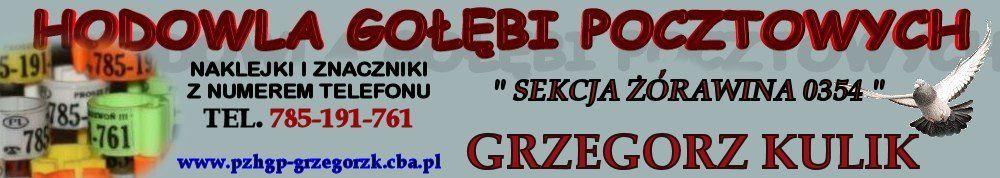 PZHGP -  STRONA HODOWCY - GRZEGORZ KULIK